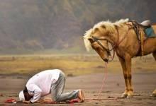 Photo of Hati Hati, Sujud Yang Seperti Ini Dapat Membatalkan Shalat