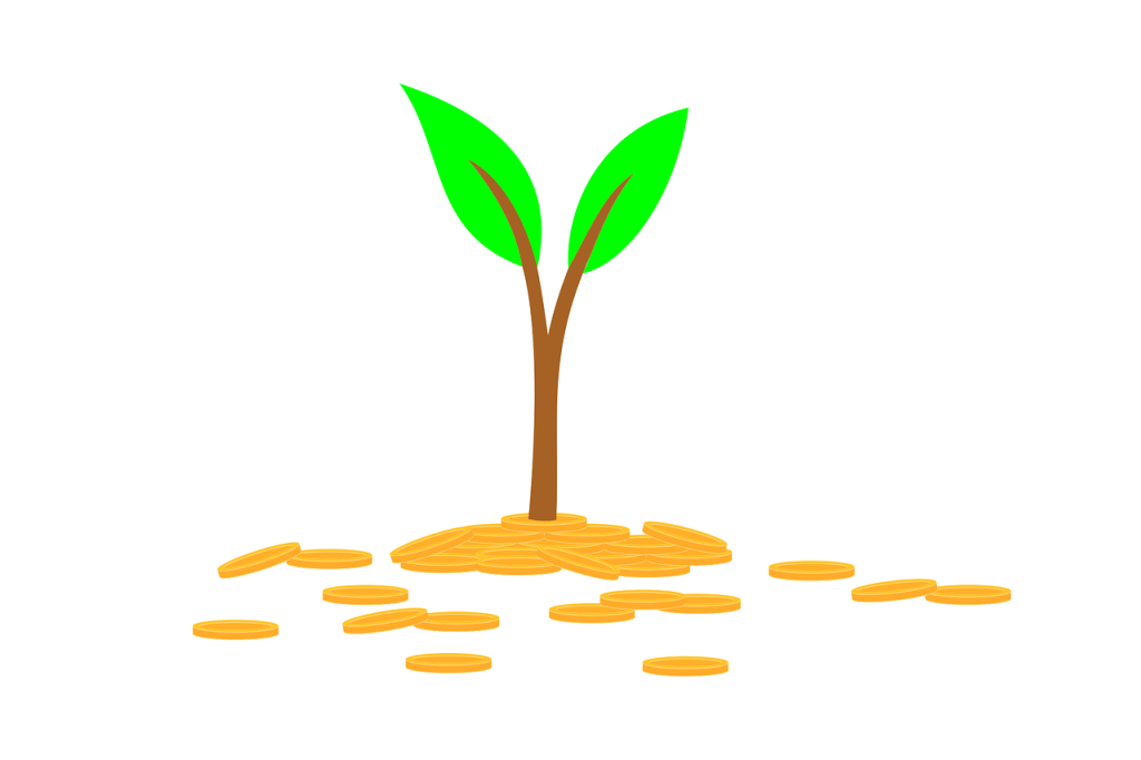 Picture: Sprout growing from gold coins