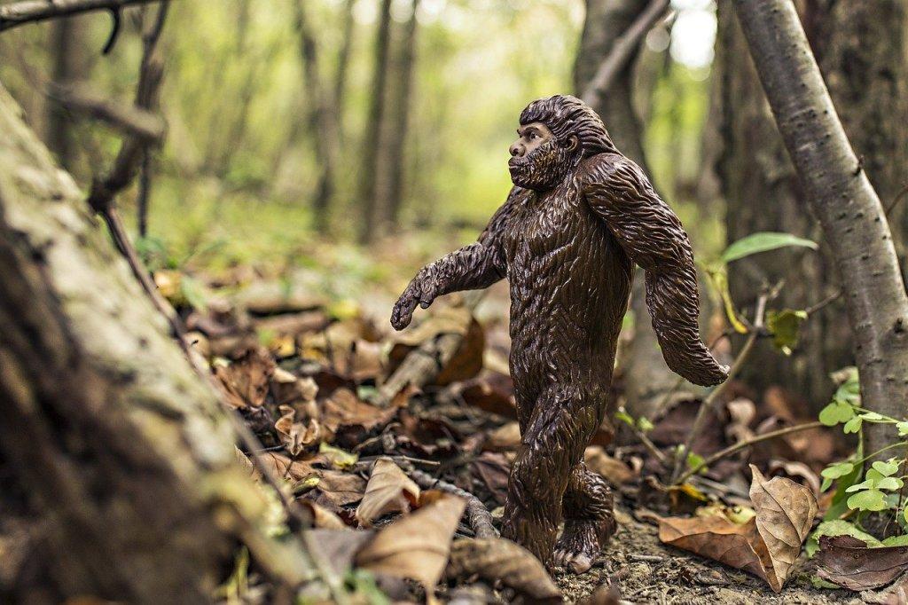 Photo: Bigfoot figure in woods