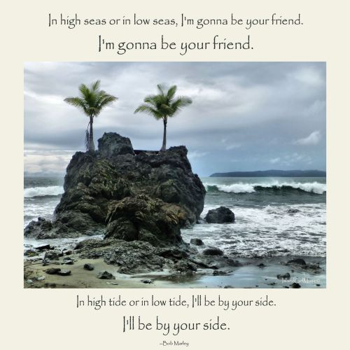 High Tide or Low Tide
