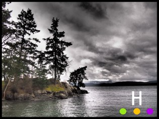 stormy day at bridges road, pender island, bc
