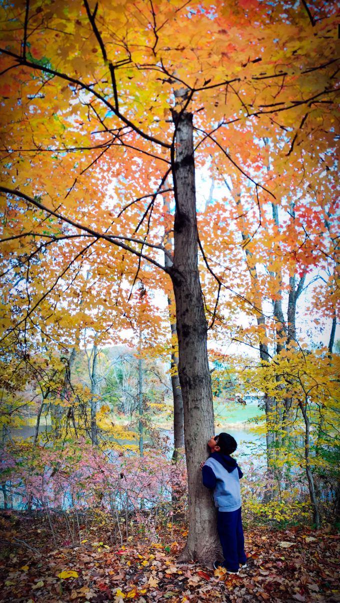 Mountain Lakes, Nature Preserve, Princeton