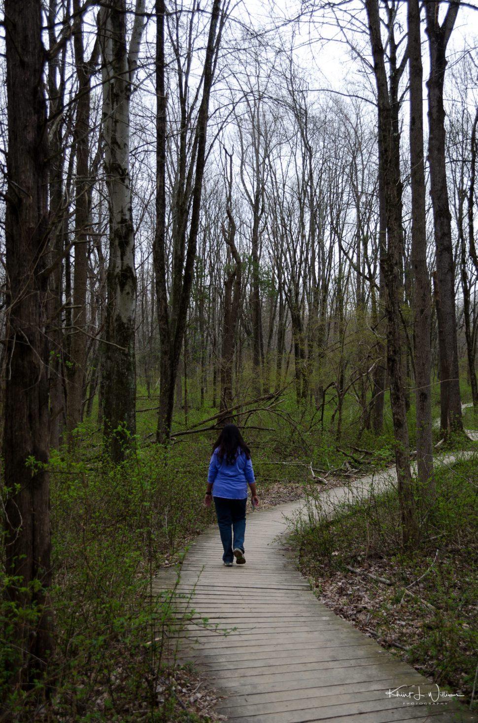 boardwalk, sourland mountain, trees, woods, woman