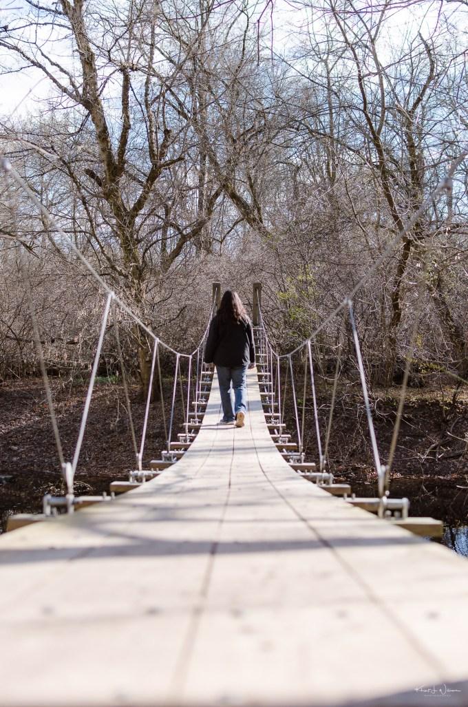 Institute Woods Bridge, Fall