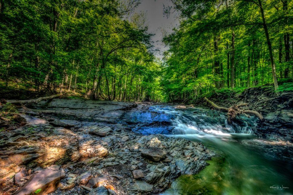 Rock Brook, Water, Woods