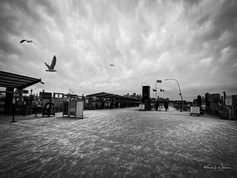 Birds flying over a pier against a cloudy sky