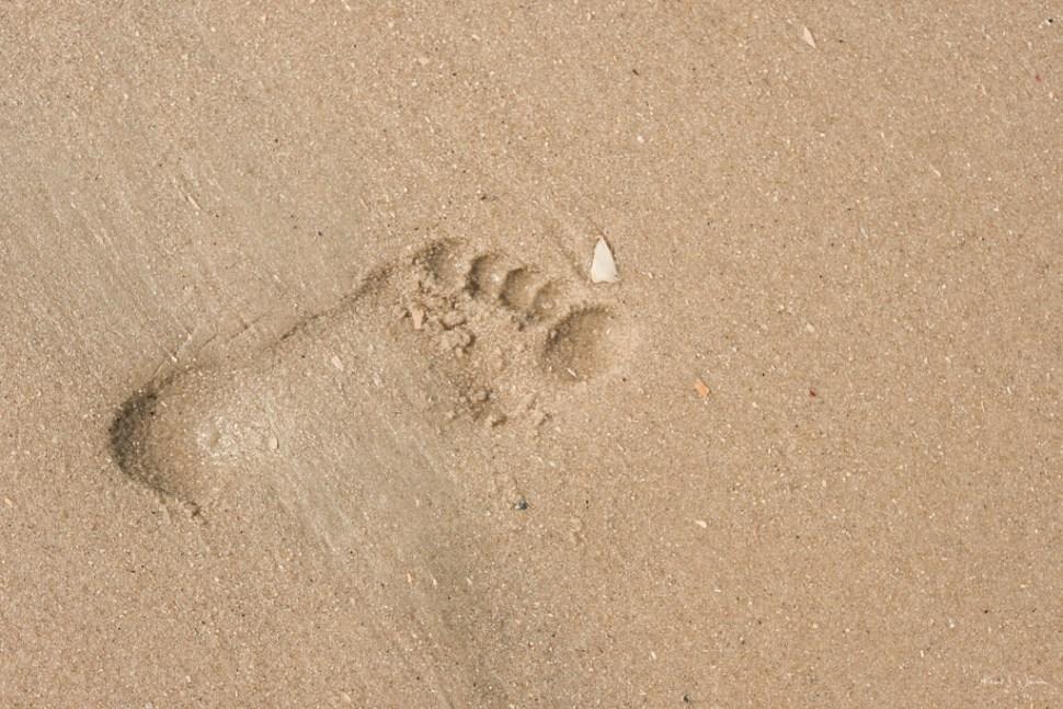 Foot print Beach Scene