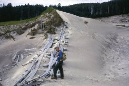 Sand Neck. WWII plank road across sand (a few planks and nails can still be found in the sand). Bill HIll
