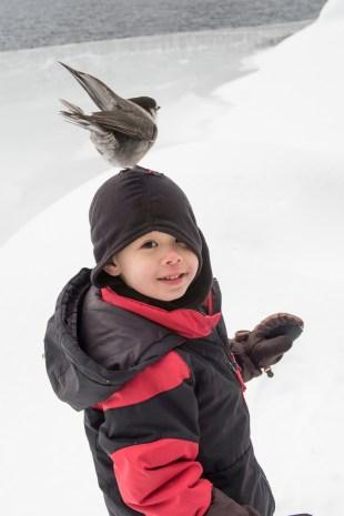 helen-makenzie-snowshoe-screen-0283