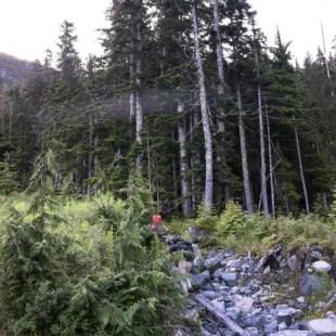 whiltilla-mountain-screen-9943