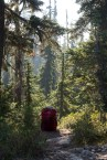 arnica-lake-mount-phillips-0610