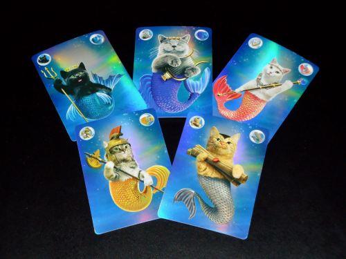 Catlantis - Cards