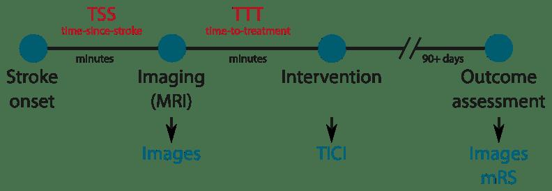 ISLES: Ischemic Stroke Lesion Segmentation Challenge 2016