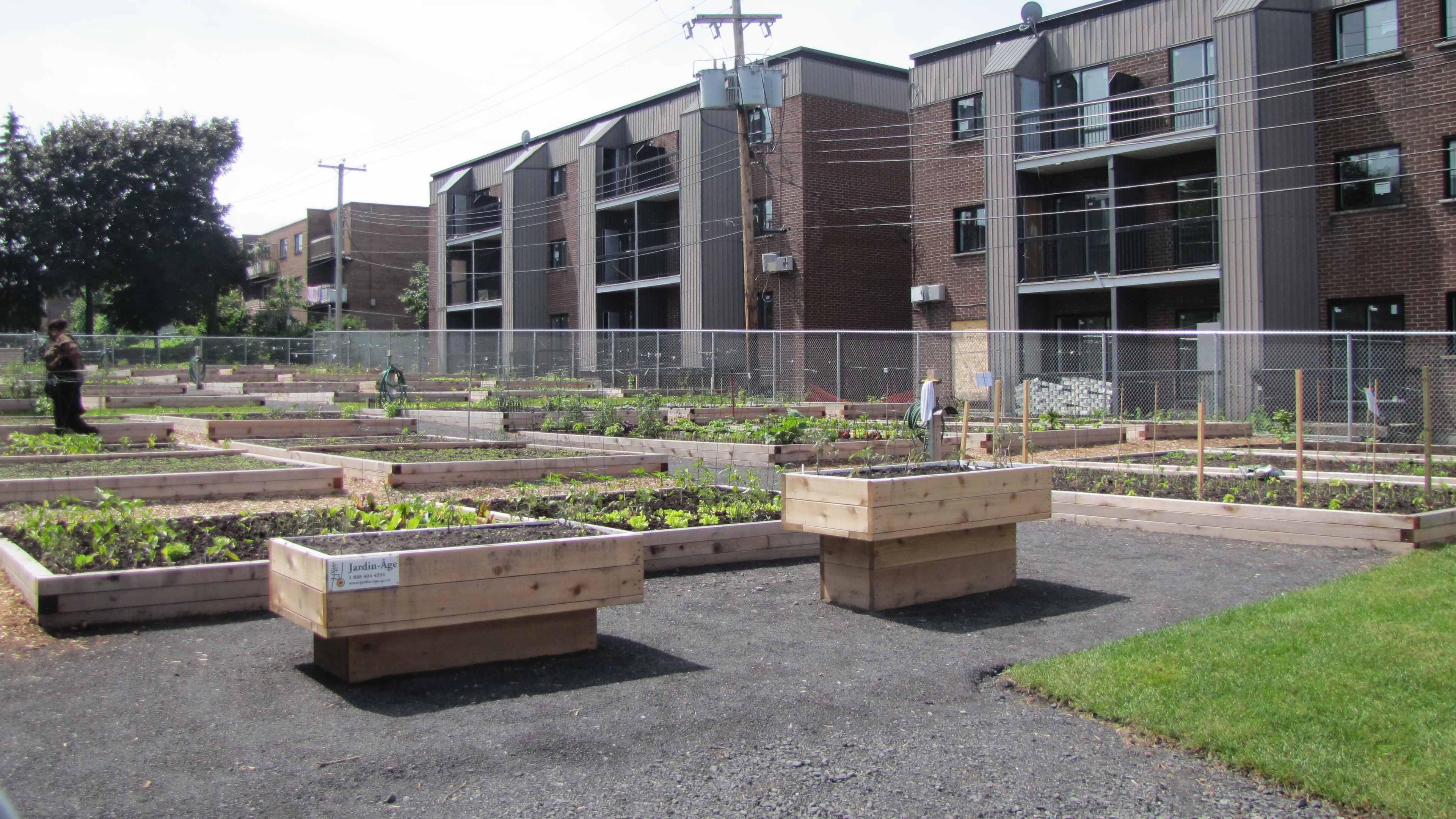 Ouverture Du Jardin Communautaire Au Parc Tardif à