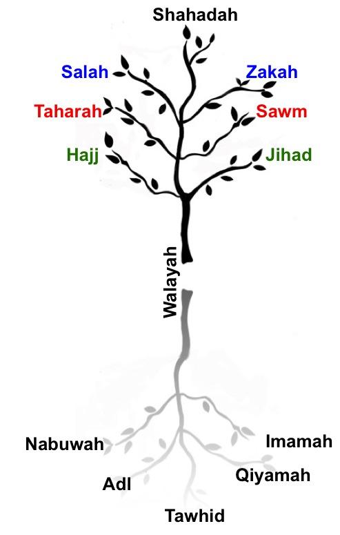 religion tree diagram 2004 chevy venture power window wiring the seven pillars of islam: esoterics walāyah – ismailimail