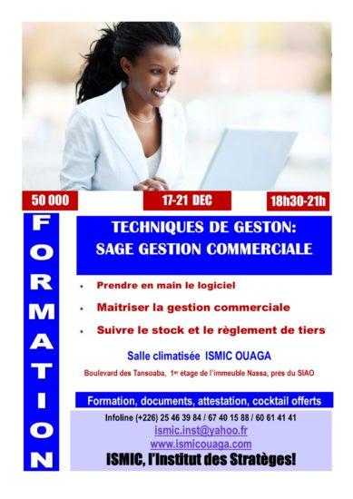 Du 17 au 21 décembre, formez-vous en SAGE Gestion Commerciale à ISMIC