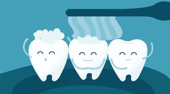 hammaste faktid