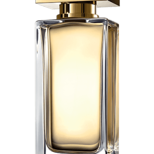 dolce and gabbana the one edt 100ml