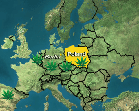 Europe Cannabis Laws in Poland