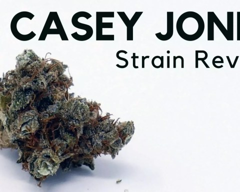 Casey Jones ISMOKE Review