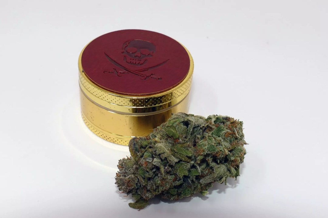 Jaffa Caked Cookies, Jaffa Caked Cookies Cannabis Strain Information & Review, ISMOKE