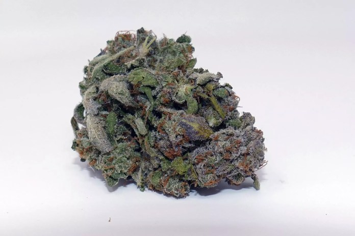 Jaffa Caked Cookies, Jaffa Caked Cookies Cannabis Strain Information & Review