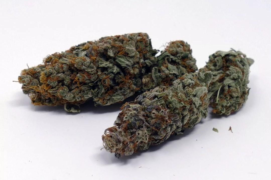 Gigantuan Auto, Gigantuan Automatic Cannabis Strain Information & Review, ISMOKE