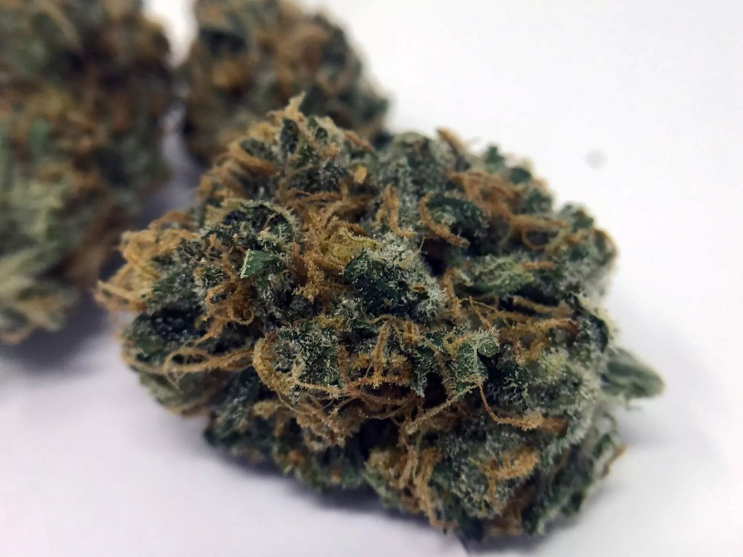 Strawberry Cough, Strawberry Cough Cannabis Strain Review & Information, ISMOKE
