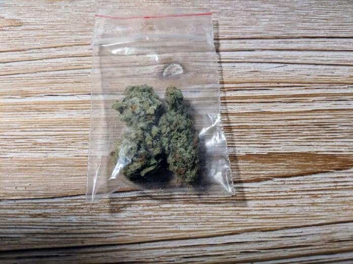 Mataro Blue, Mataro Blue Cannabis Strain Review and Information