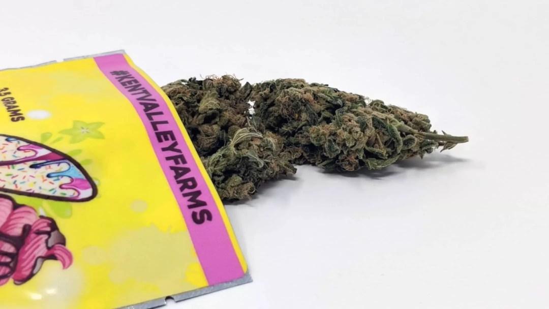 Sour Banana Sherbet, Sour Banana Sherbet Cannabis Strain Review & Information