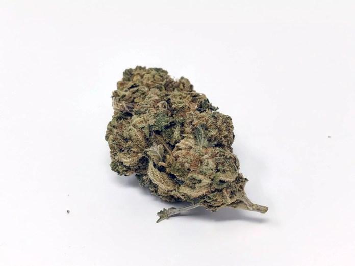 CBD Lemoncello, CBD Lemoncello Cannabis Strain Information & Review