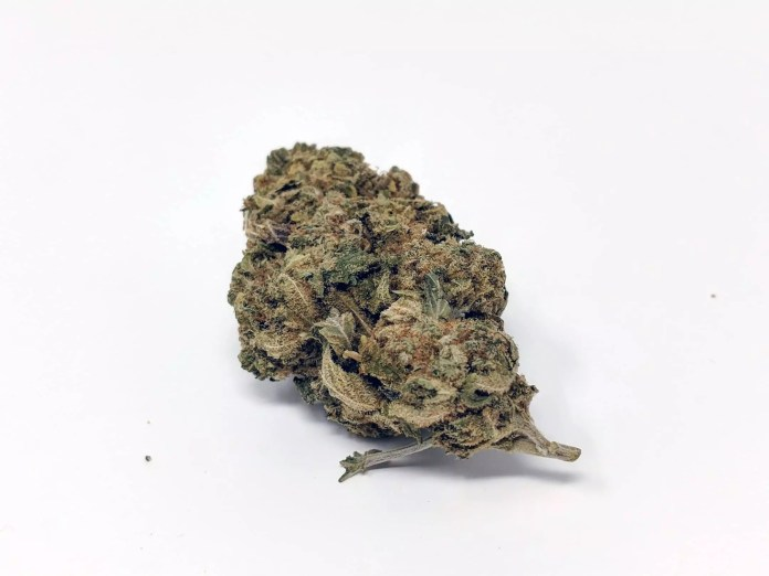 CBD Lemoncello, CBD Lemoncello Cannabis Strain Information & Review