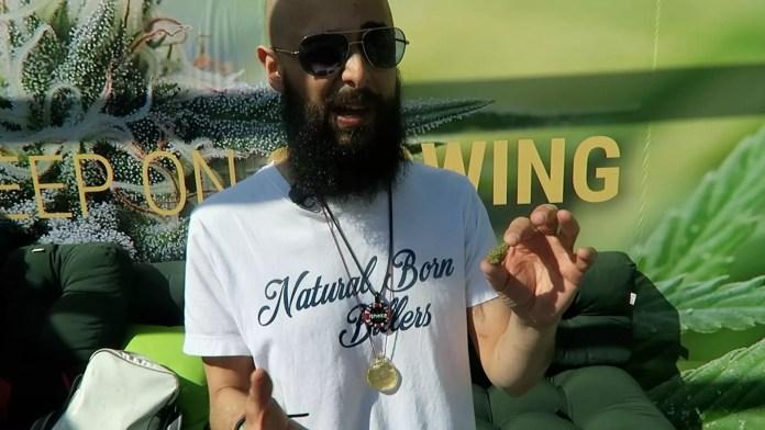 Silver Haze, Lemon Shining Silver Haze Cannabis Strain Review