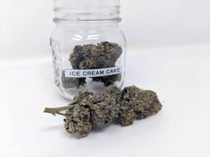 Ice Cream Cake, Ice Cream Cake (Seed Junky Genetics) Cannabis Strain Review & Information