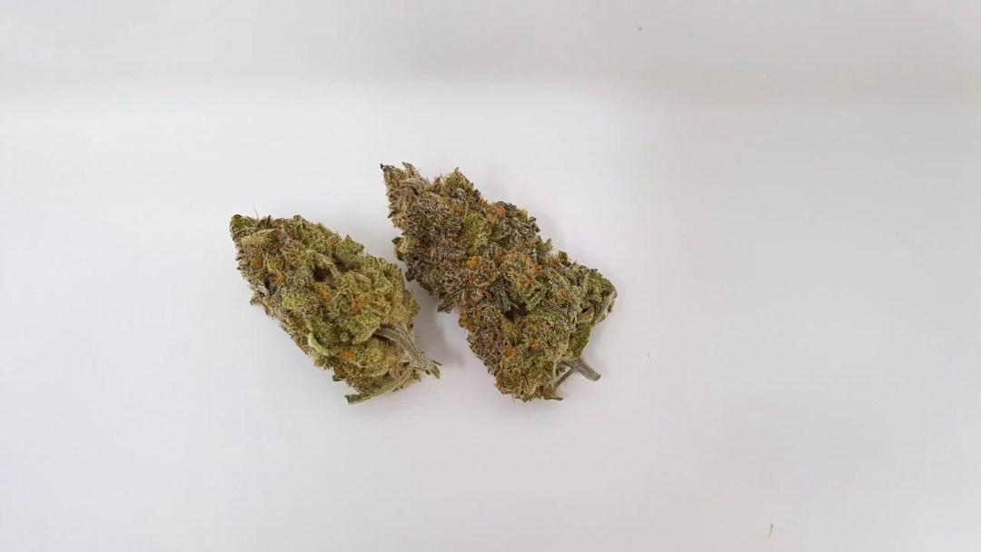 Chocolate Orange, Chocolate Orange Cannabis Strain Review & Information