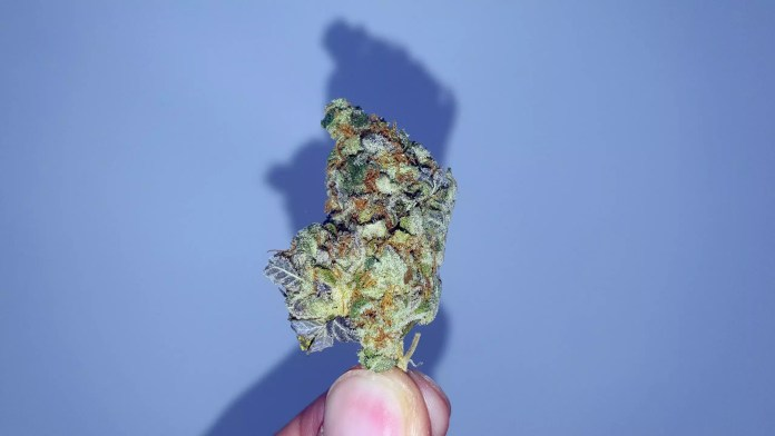 , Crushed Berries Cannabis Strain Review & Information
