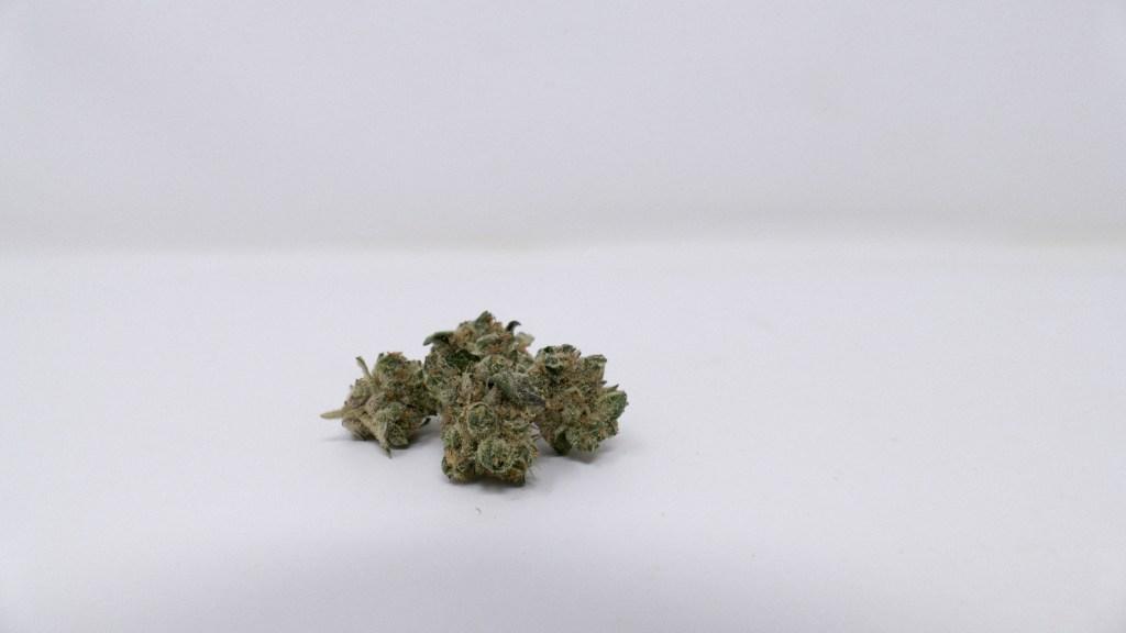 GMO, GMO Cannabis Strain Review & Information, ISMOKE