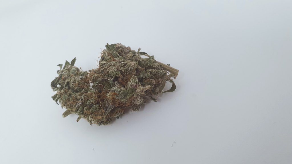 , Berry Split Cannabis Strain Review & Information
