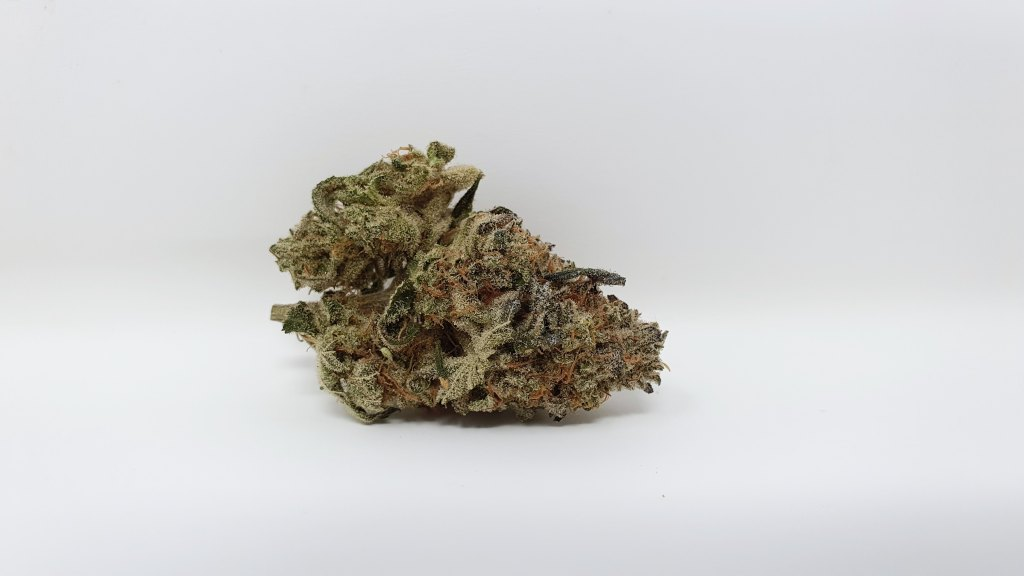 , Harambe's Revenge Cannabis Strain Review & Information