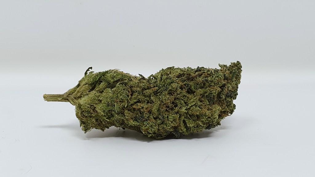 Biker Mouse, Biker Mouse Cannabis Strain Review & Information, ISMOKE