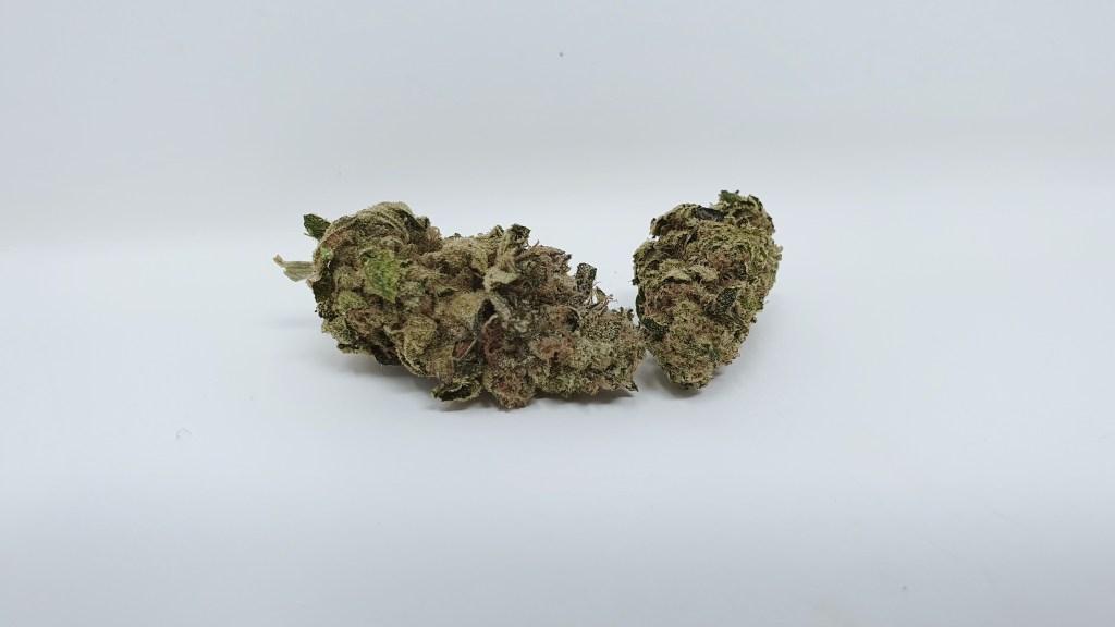 Enzo, Enzo Cannabis Strain Review & Information, ISMOKE