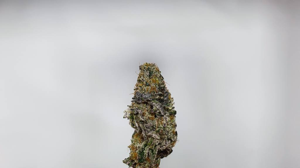 Space Jam, Space Jam Cannabis Strain Review & Information, ISMOKE