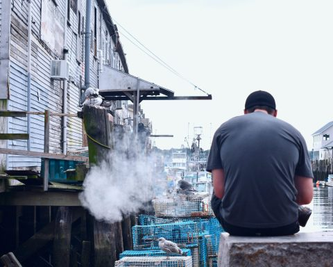 Vaping And Sustainability - How To Avoid Harming Environment