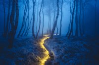 500px Blog   3 Magical Photos that Capture Light at Night