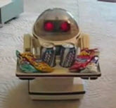 Robots in the home