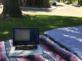 Working from the Park and still getting wifi signal