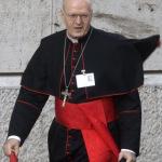 cardinale erdo