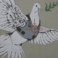 dove of peace with jacket