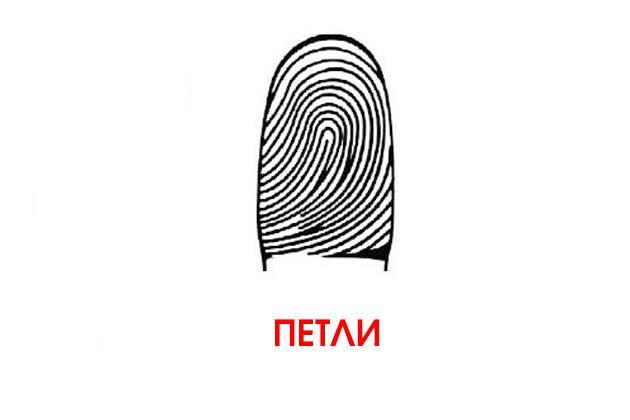 пет | отпечатки твоих пальцев могут рассказать все о твоих способностях!