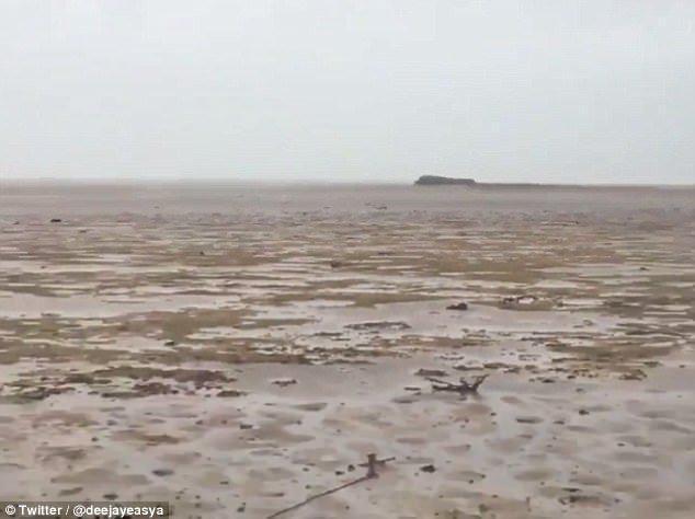 1-98 | Сюрприз после урагана Ирма — исчезнувший океан!